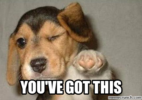 Congratulations funny dog - photo#29