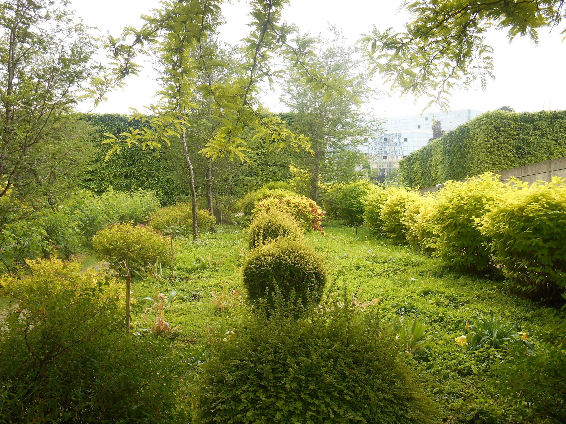 Un jardin enti¨rement jaune doré au parc André Citro n Ses