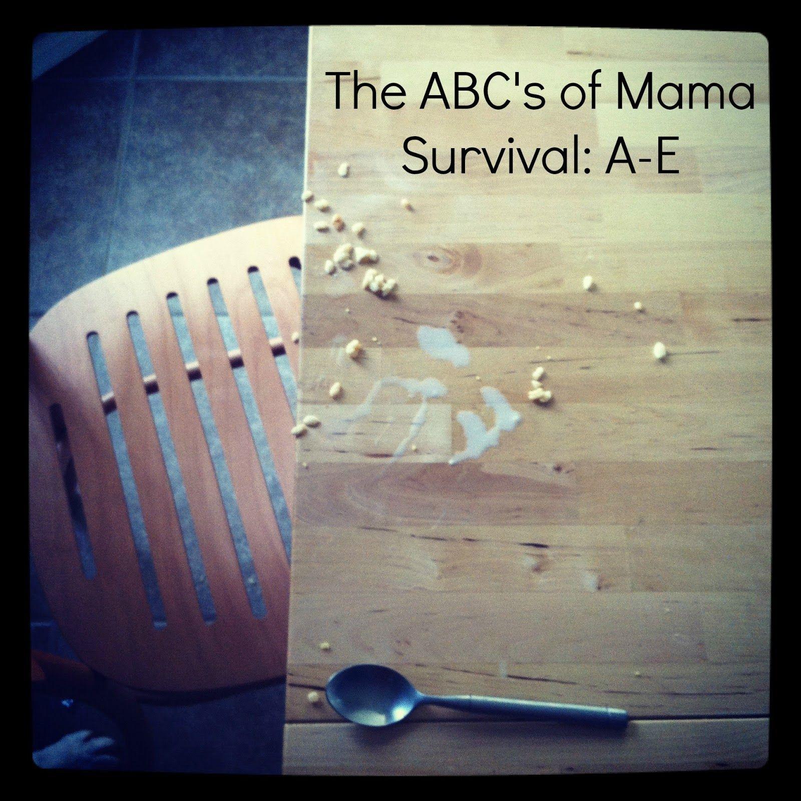 survival mom visit abc behavior dizzy mama