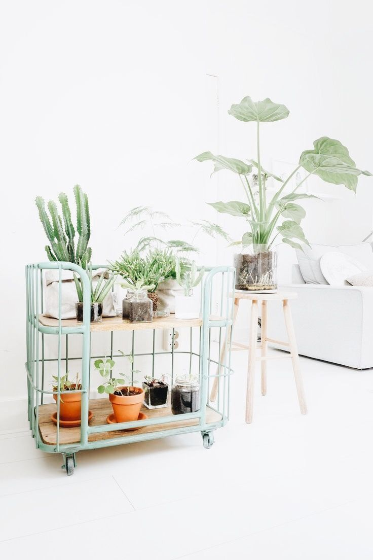 Pin By Samantha Hammack On Dream House Diy Plant Stand