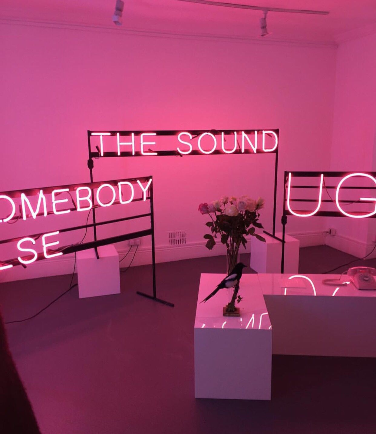 "The 1975 Neon Sign Magnificent ❀_""s̶a̶w̶ Y̶o̶u̶r̶ F̶a̶c̶e̶ A̶n̶d̶ G̶o̶t̶ I̶n̶s̶p̶i̶r̶e̶d̶_ Inspiration"