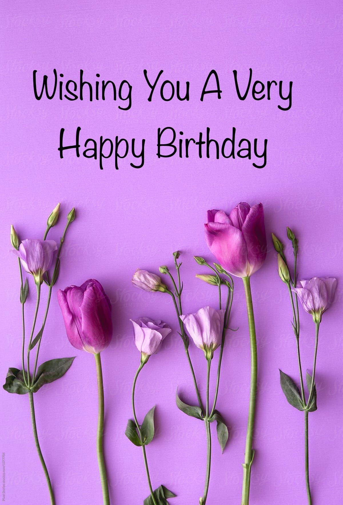 happy birthday pinklilac tulips purple background
