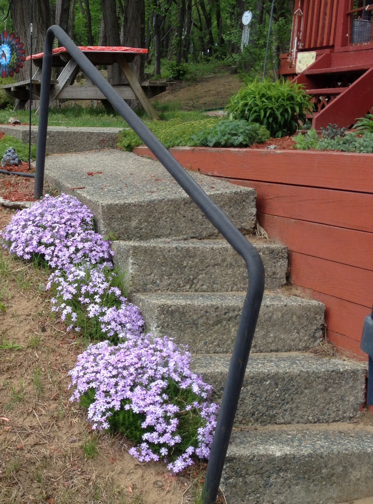 Phlox going up stairs (that need fixing)