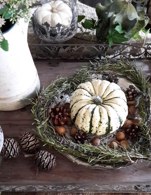 Shabby House and Garden: Kürbis grün-weiss und fette Henne #wintergardening