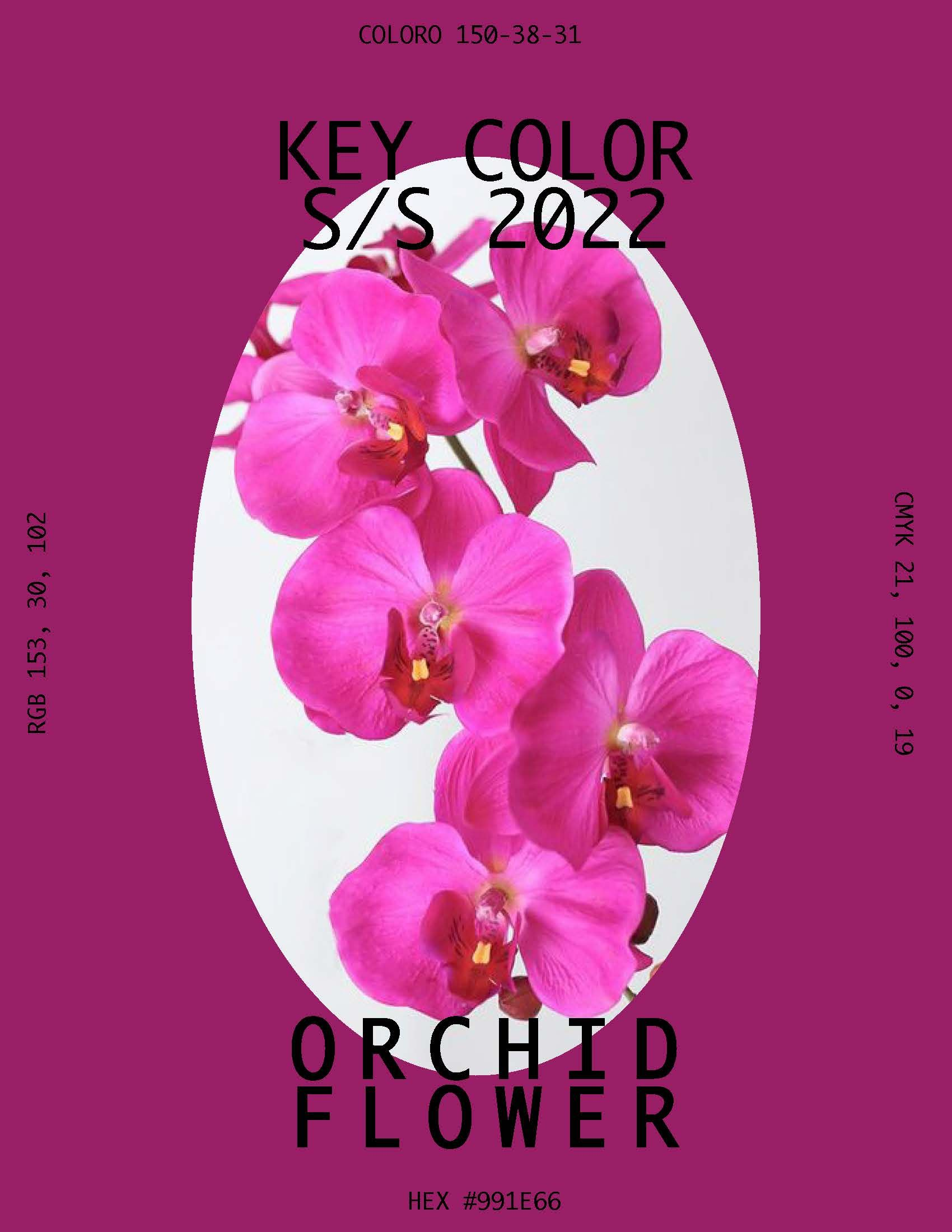 S/S 2022 Key Color Orchid Flower in 2020 Print design
