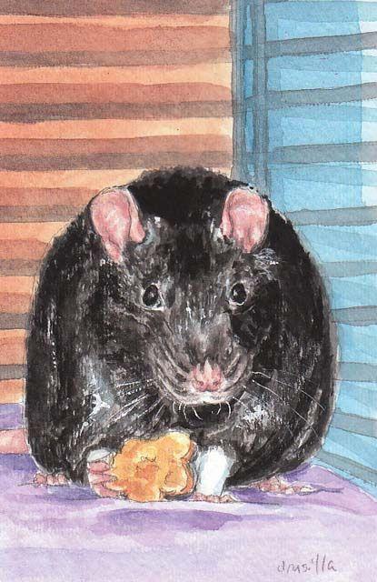 Templeton Watercolor 4 X6 Artwork Art Rats