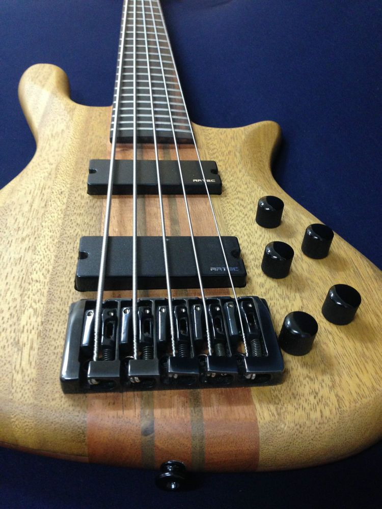 ba746d7a71 Caraya SPB-3214N 5-String Neck-thru Electric Bass Guitar Natural w/Hard Case  #Caraya