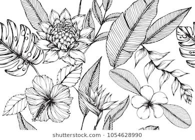 e9270ec4f Hawaiian pattern seamless background with Tropical leaf, Heliconia,  Hibiscus, Plumeria flower drawing illustration.