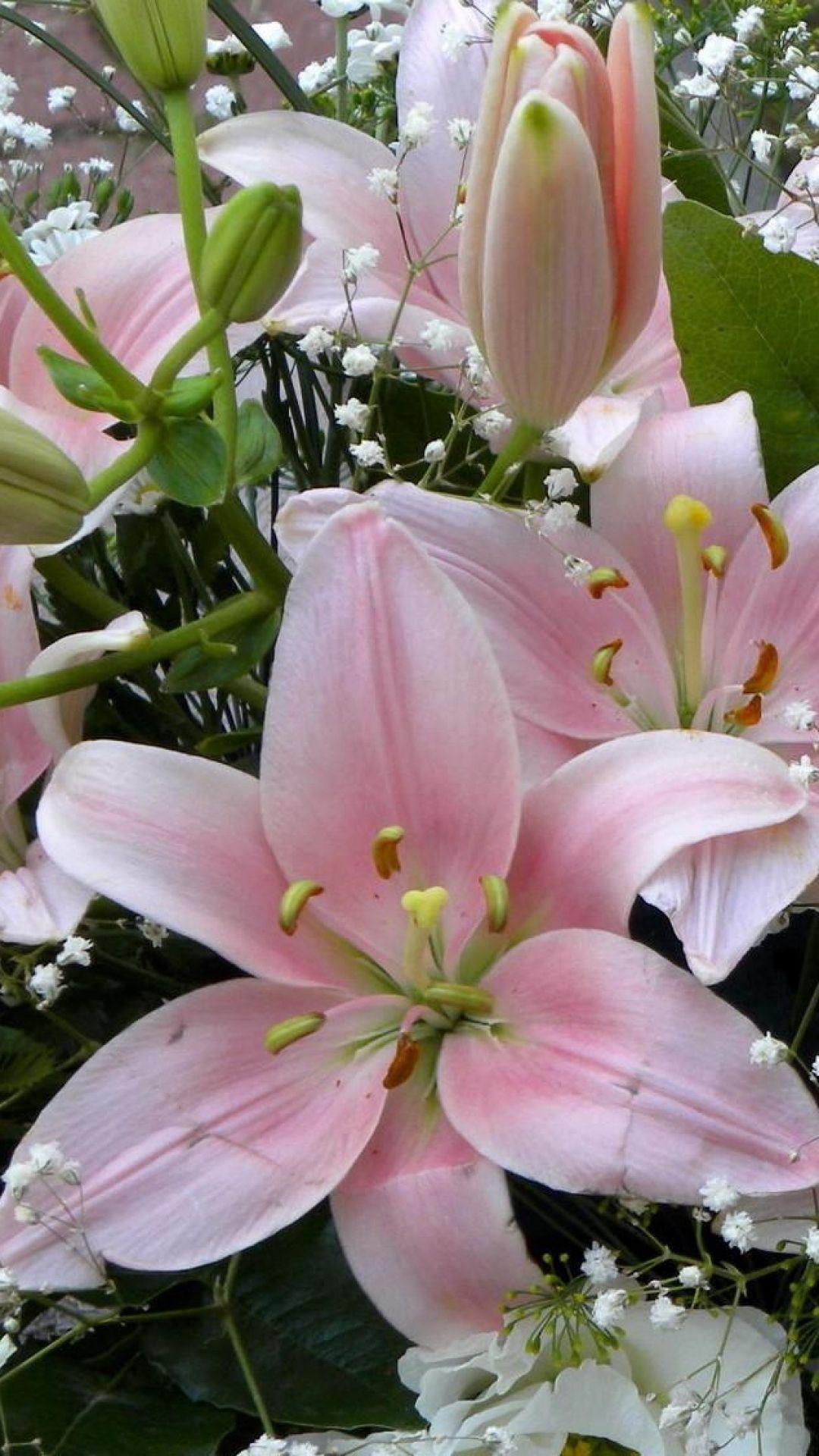 Lilies flowers gypsophila bouquet buds giardinaggio