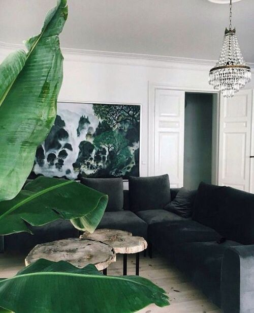 Chandelier // Tropical Plant // Large Artwork // White Walls // Textured Sofa