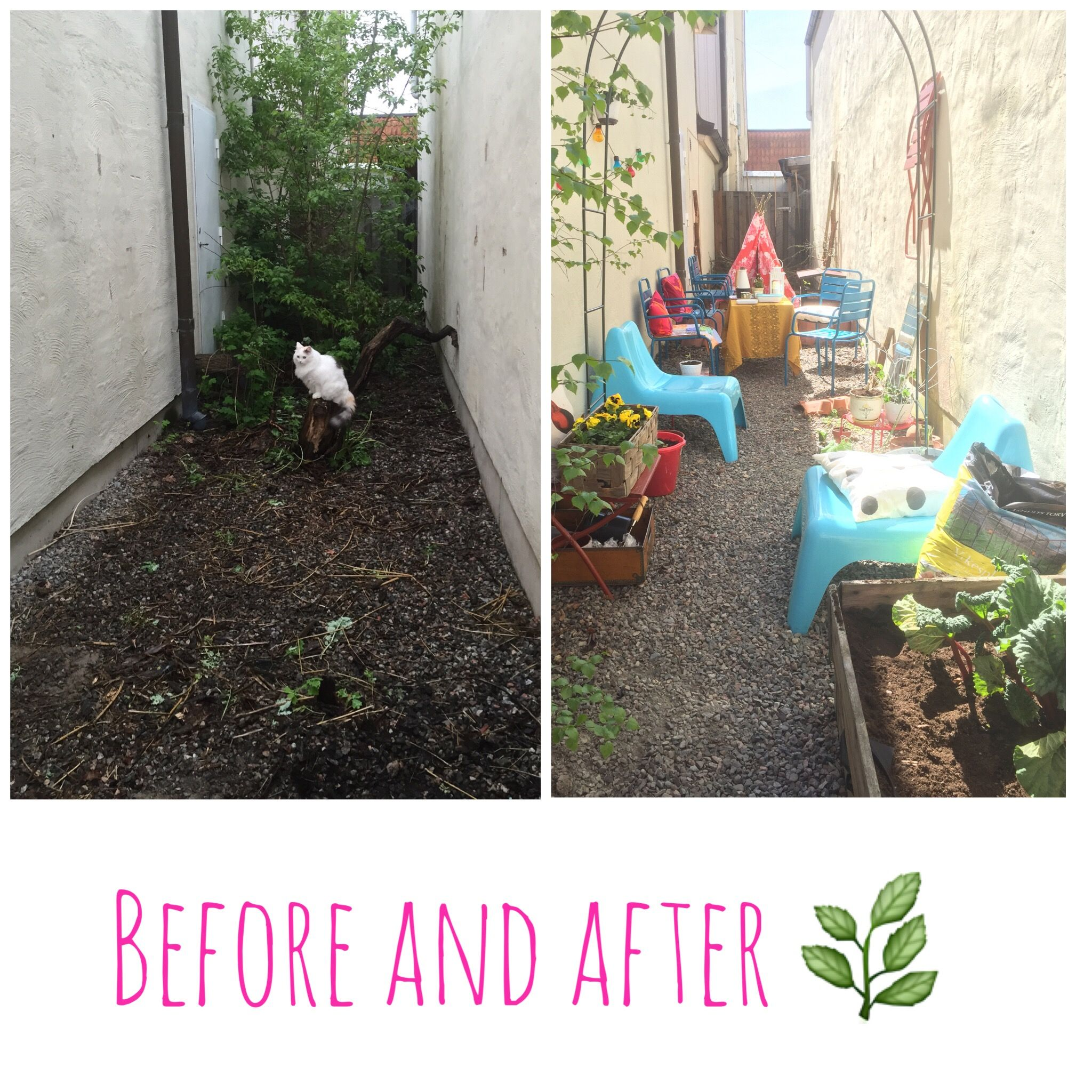Before and after: our tiny backyard makeover