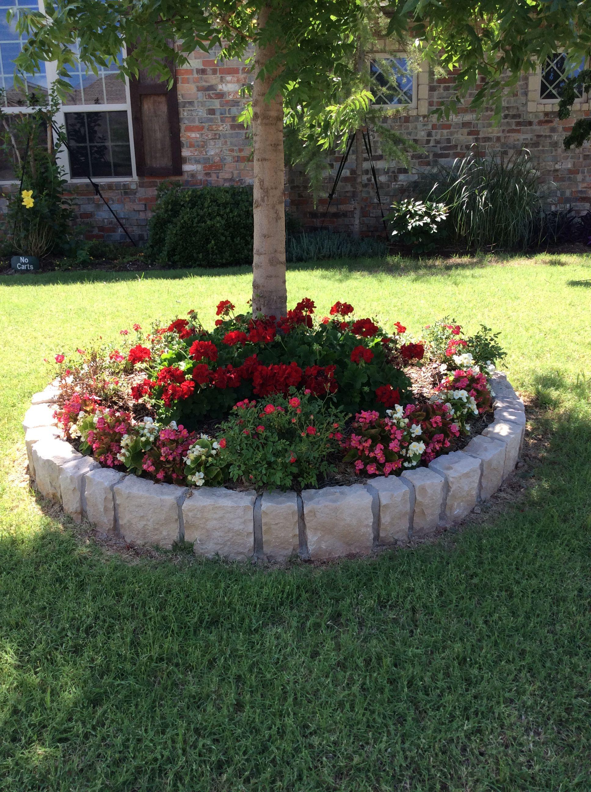 Jardinera arboles casa de campo jardines arboles para for Jardineras para arboles grandes