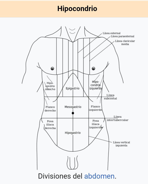 Pin de faustineta en sa | Pinterest | Enfermería, Medicina y Anatomía