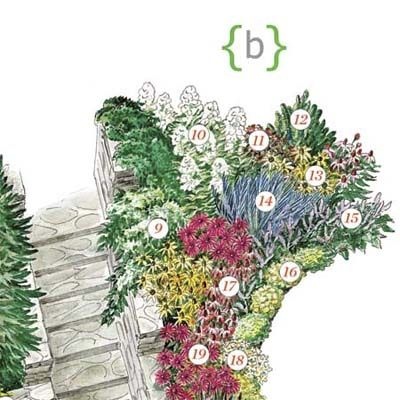 Four Seasons Of Interest: Section B | Front Yard Plantings To Make An  Entrance |