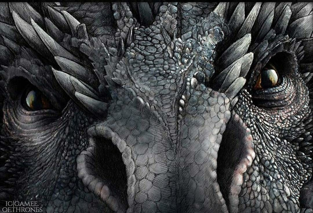 Pin By Susanmueller On Filmes Series E Afins Game Of Thrones Artwork Drogon Game Of Thrones Dragon Tattoo Art