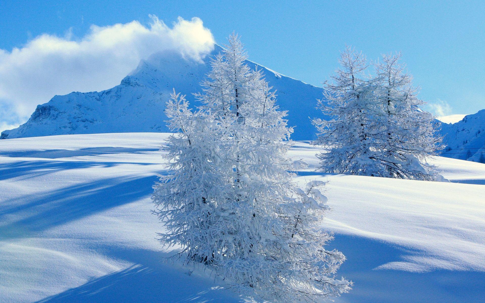 Landscape Beautiful Wallpaper Jpg 1 920 1 200 Pixels Snowfall Wallpaper Landscape Wallpaper Winter Landscape Photography