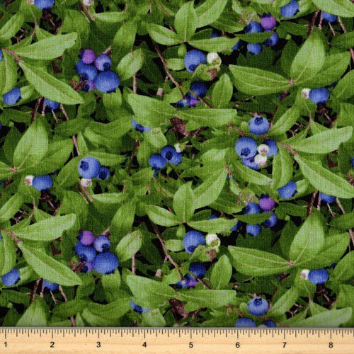 Berry Good - Blueberry - Elizabeth Studio 151-Green