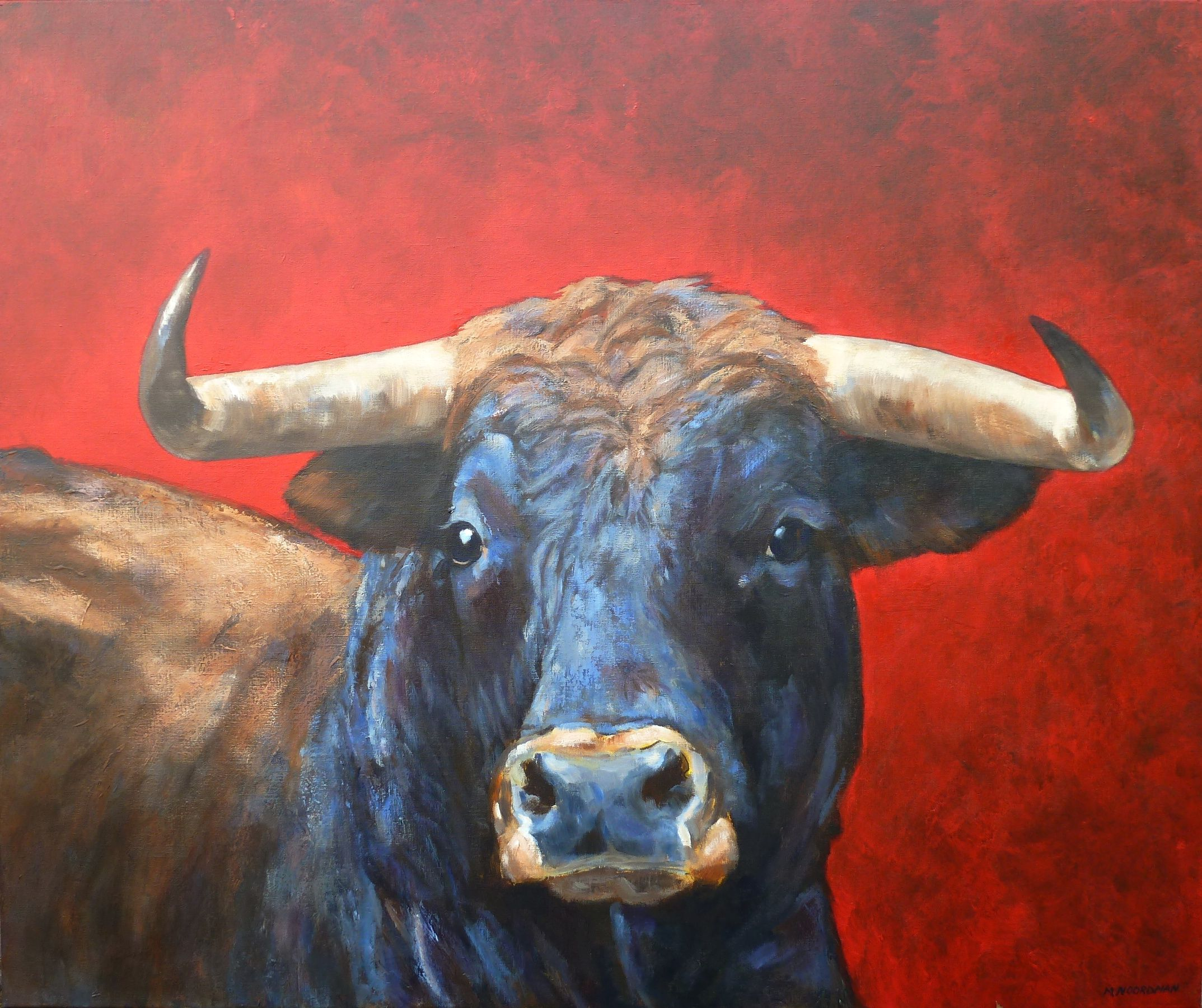 Картинки свирепого быка
