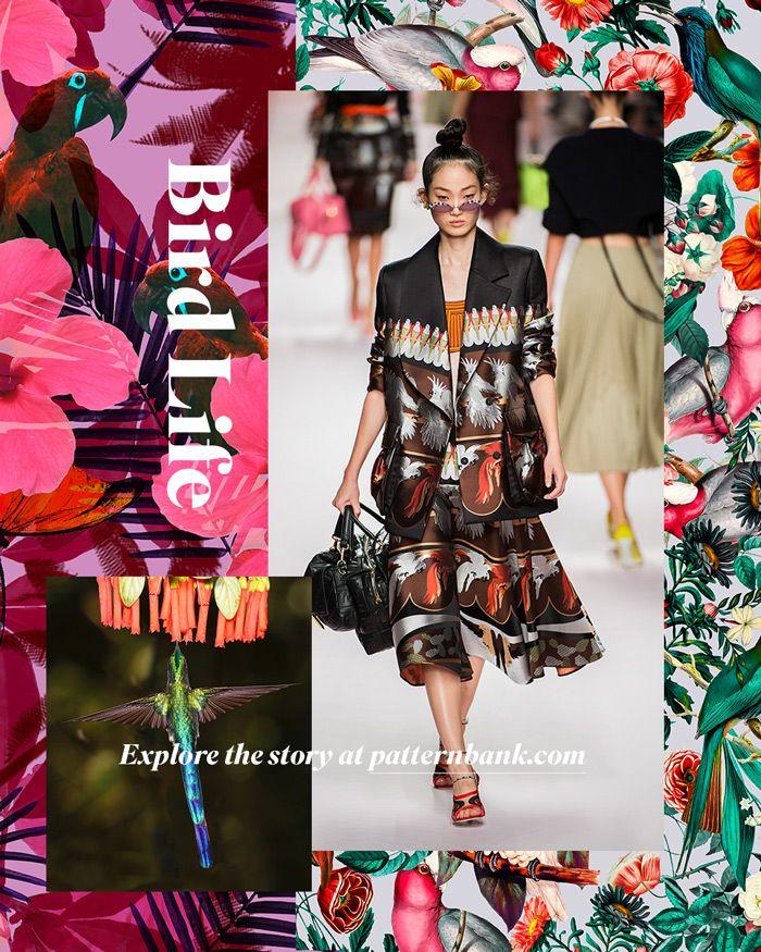 Spring/Summer 2020 Print & Pattern Trend - Bird Life