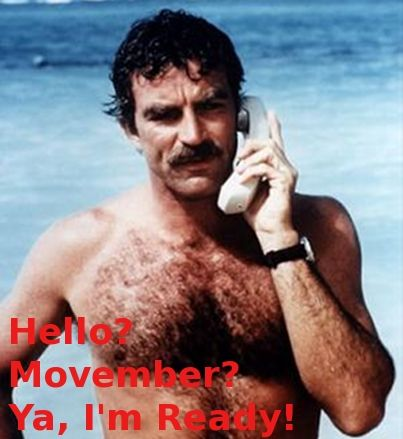 Tom selleck is always ready for movember movember pinterest movember fandeluxe Epub