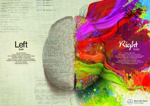 The Left Brain vs the Right Brain (1)