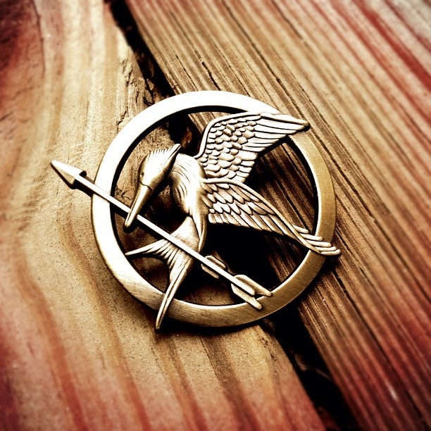 mockingjay pin! Still need one :/
