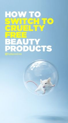 How to Switch to Cruelty-Free Beauty Products