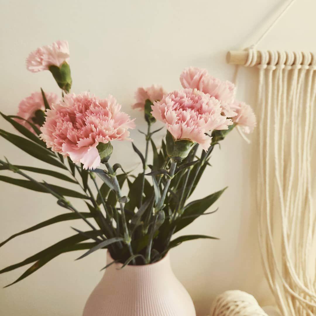 Witajcie Dzis Na Pierwszym Planie Kwiaty Ktore Uwielbiam Gozdziki Sa Urocze I Na Dodatek Bardzo Dlugo Mozna Sie Nimi Cieszyc Ro Glass Vase Decor Vase