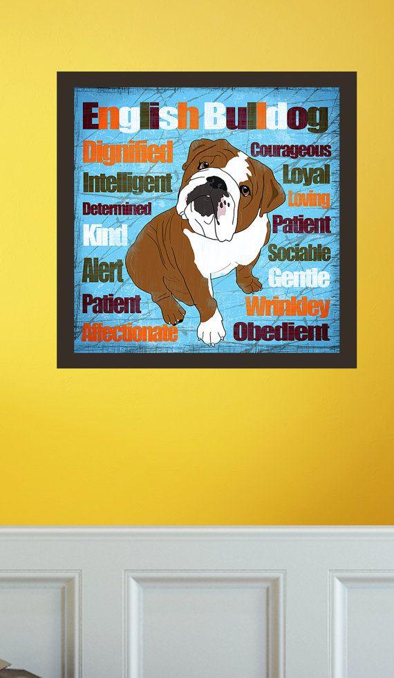 Columbus Oh English Bulldog Meet Daisy