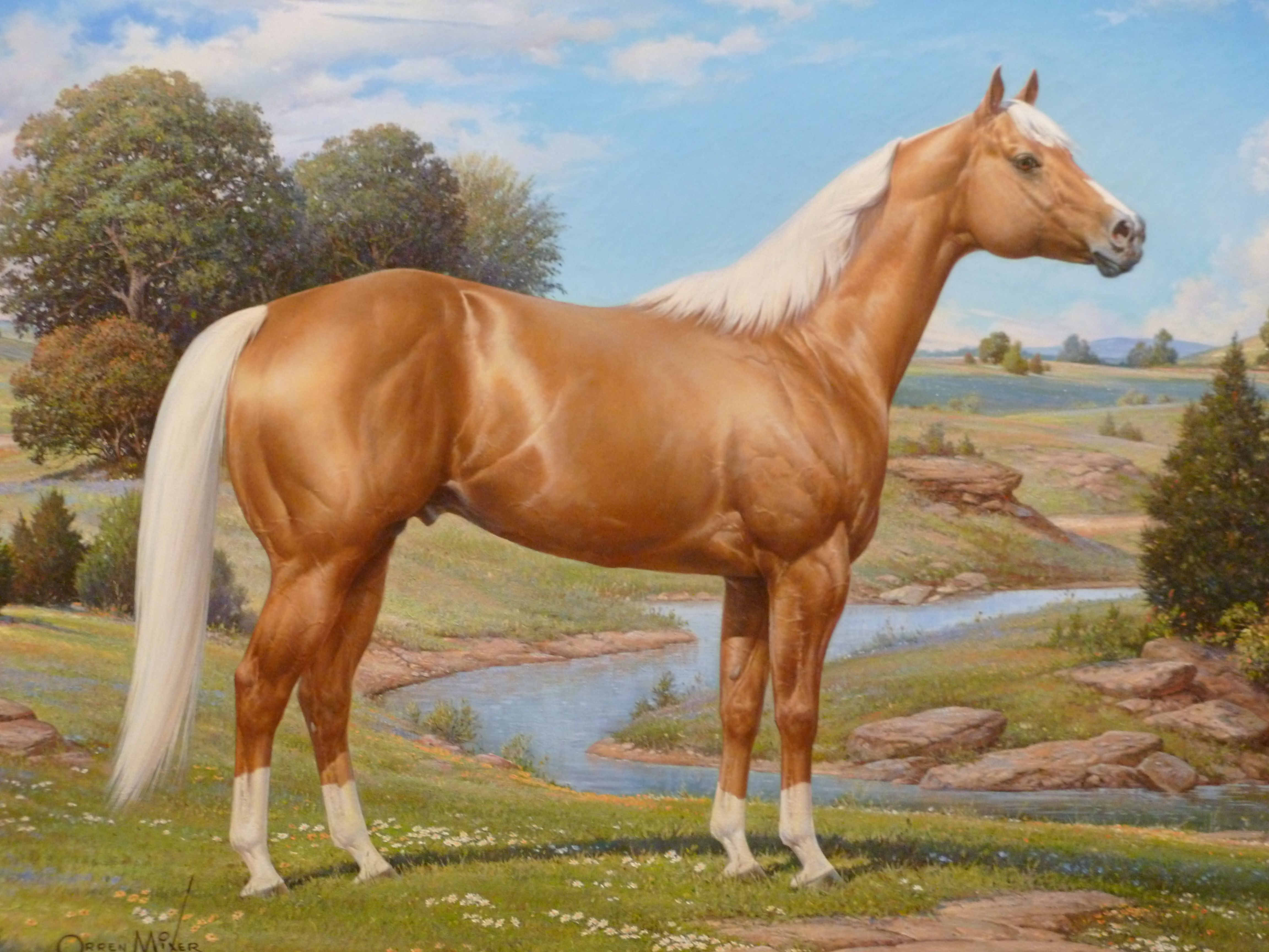 REVIEW American Quarter Horse celebrated The Ranger