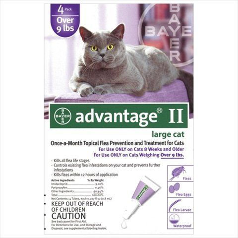 Advantage 2 Cat Learn More By Visiting The Image Link This Is An Affiliate Link And I Receive A Commission For Th Flea Control Flea Control For Cats Fleas