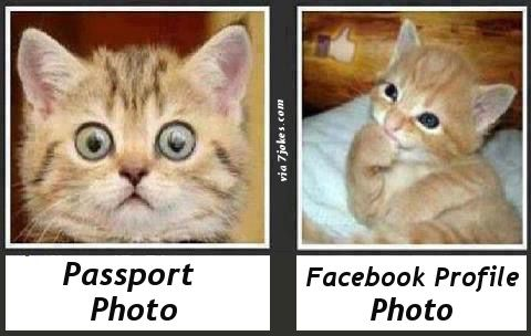 Difference Between Passport Photo And Facebook Profile Photo 7jokes The Fun Starts Here Funny Cat Memes Cat Memes Funny Animals
