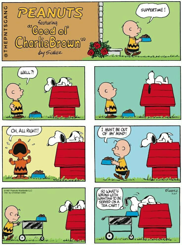 Cell phone wallpaper / background.   Snoopy Charlie Brown ...