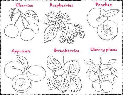 Free Coloring Pages: Fruit Salad/ Salade de fruits