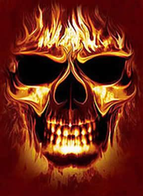 I dont know about you all as of late have you noticed your skull with flames voltagebd Choice Image