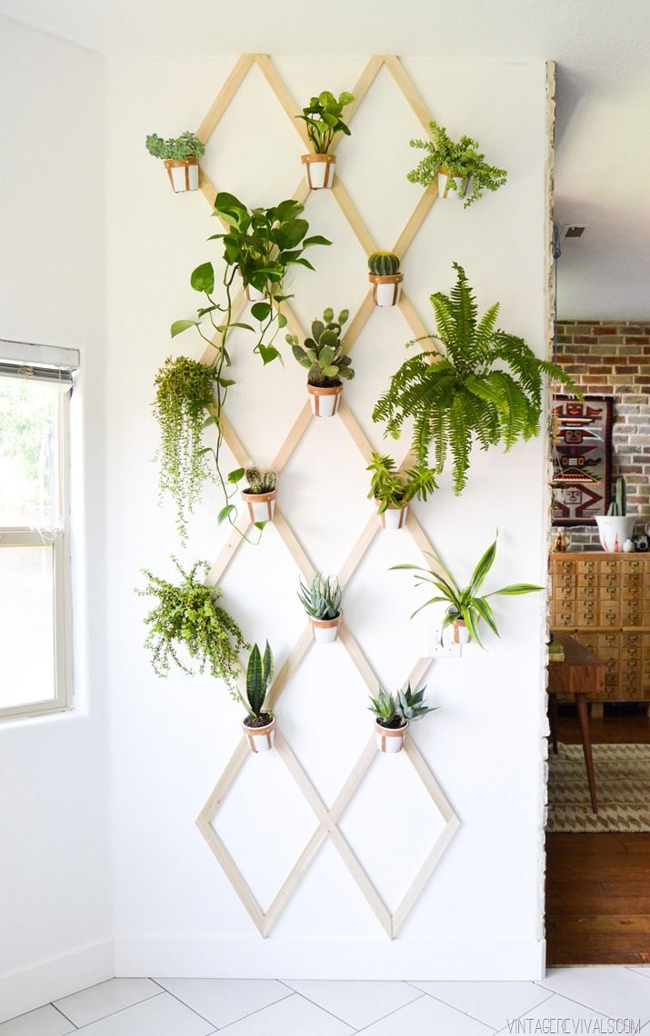 Diy wood and leather trellis plant wall pinterest for Plantas naturales decorativas