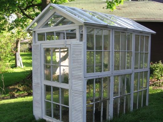 Reused windows make beautiful little greenhouse