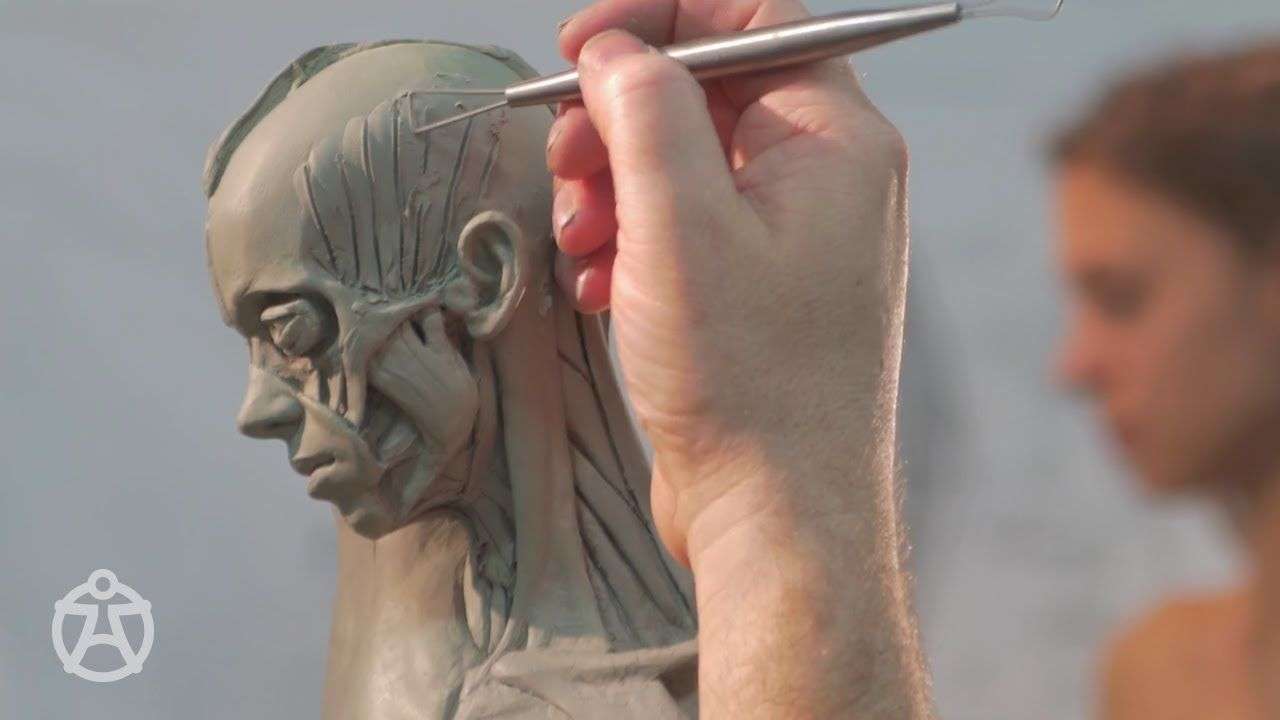 This Time Lapse Female Ecorche Sculpture Of A Beautiful Model Is A