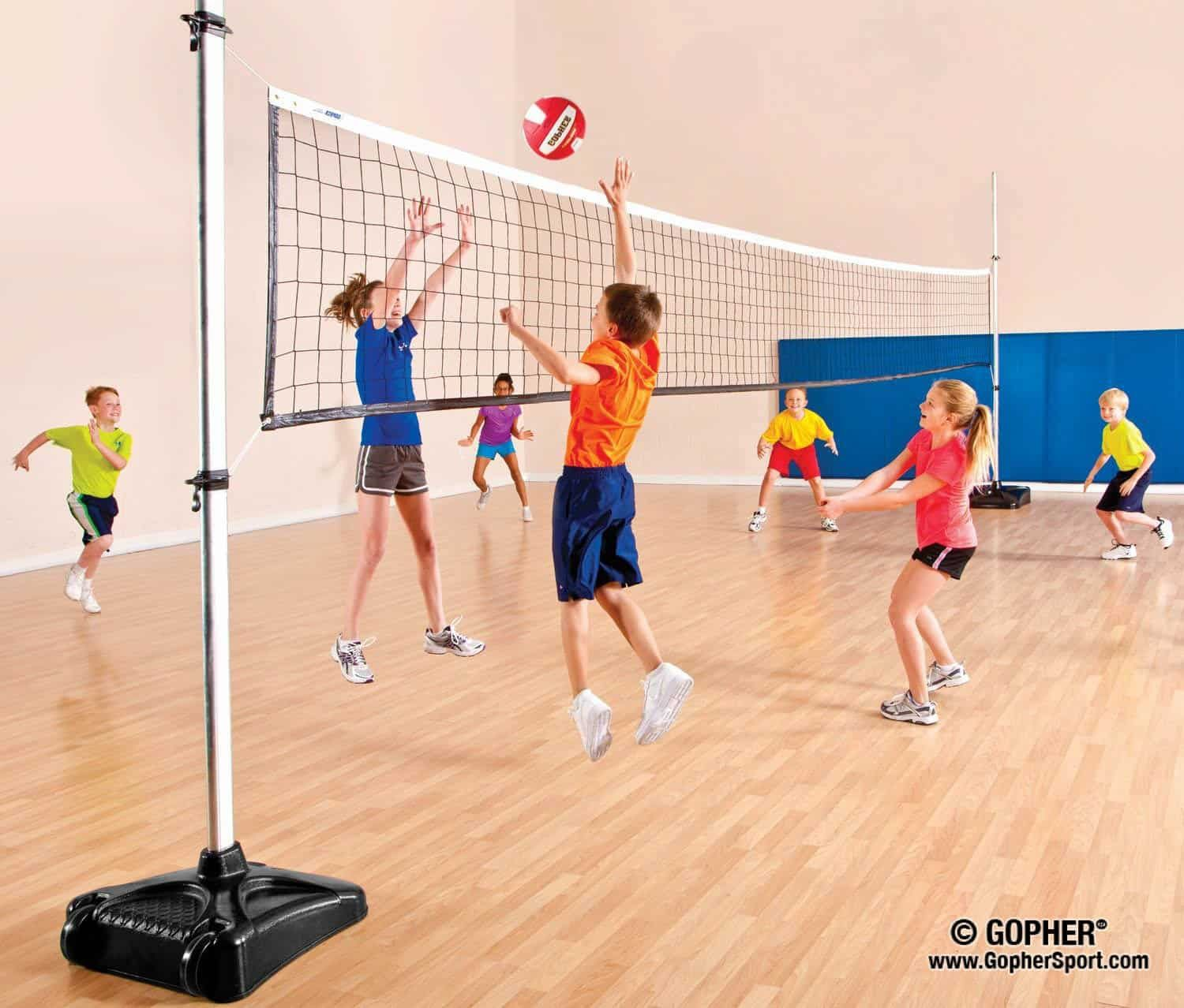 Portable Volleyball Standards Accessories Gopher Sport Volleyball Games Volleyball Volleyball Skills