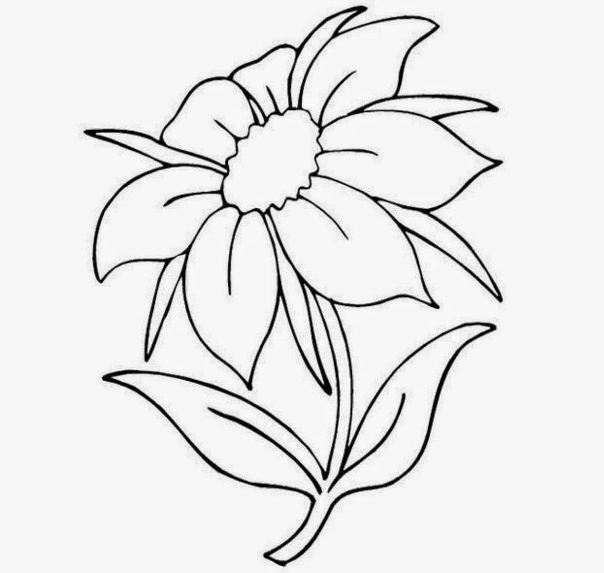 Pictures Of Flowers To Draw Beautiful Flowers Easy Flower Drawings Flower Drawing Flower Sketches