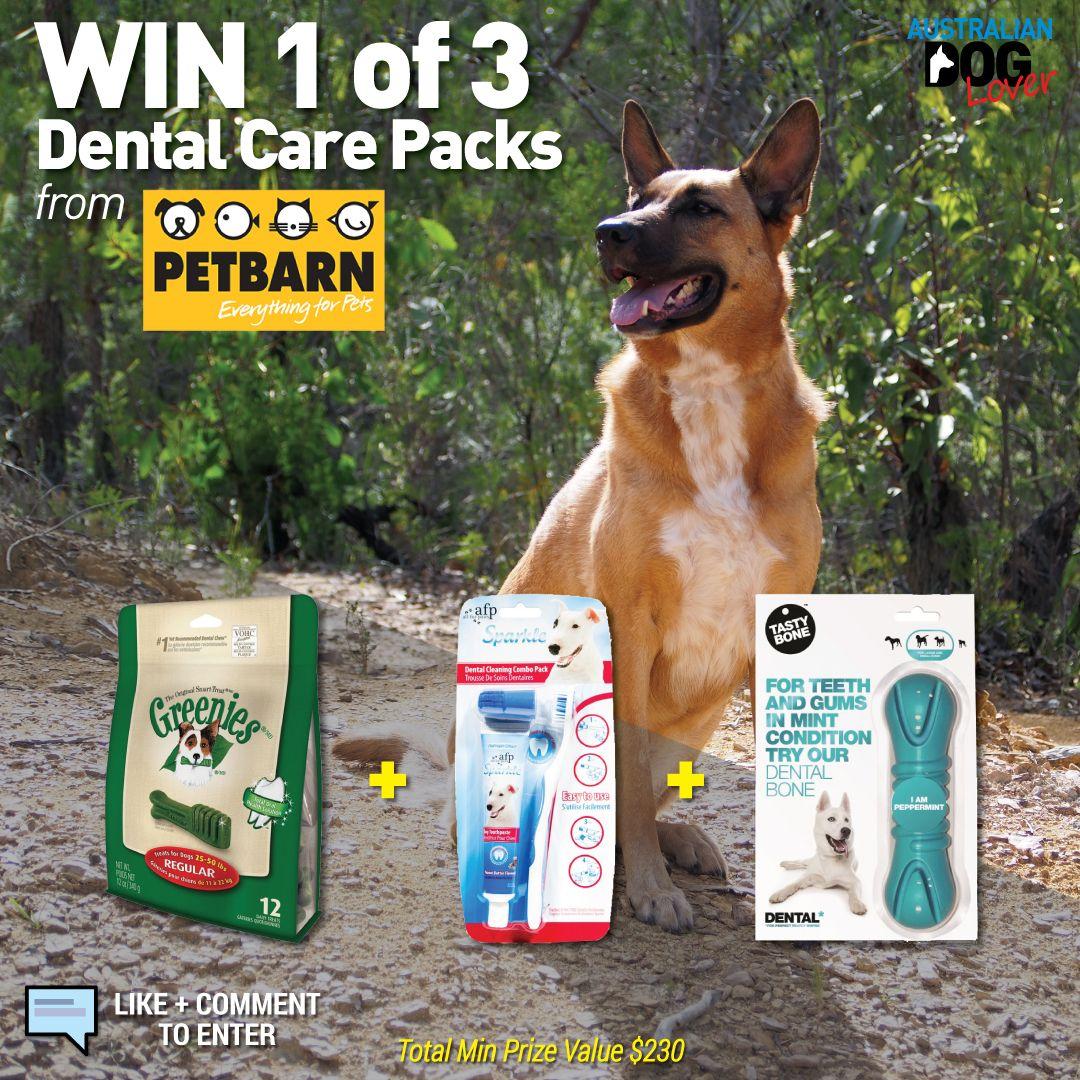 Petbarn Dog Dental Care Packs Competition Australian Dog Lover