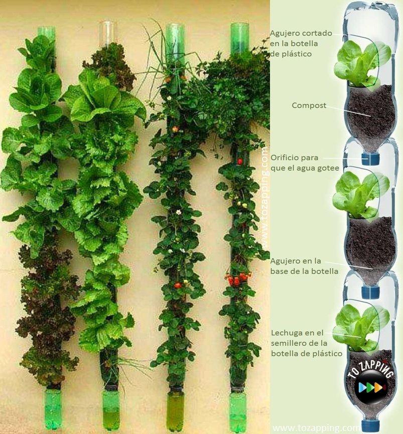 Cómo Hacer Un Huerto Vertical Tozapping Com Como Hacer Un Huerto Huertos Verticales Con Botellas Cultivo De Plantas