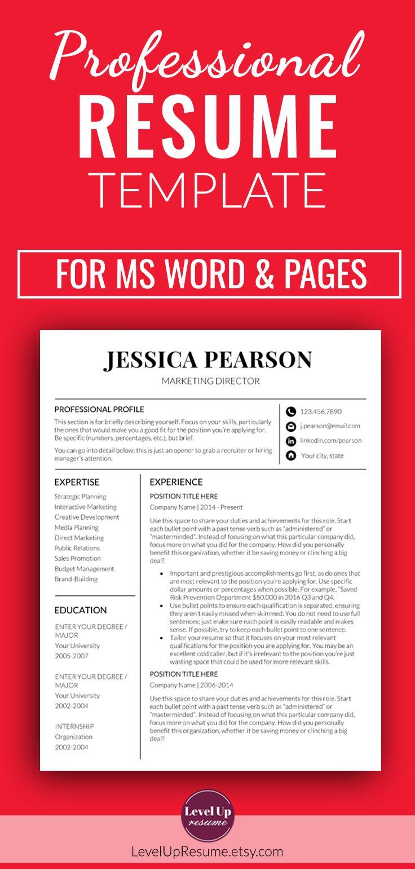 Professional Resume Template For Microsoft Word Minimalist Resume
