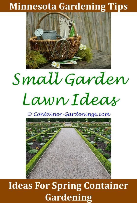 Pin By Easy Gardening Advice On Container Gardening Ideas | Pinterest |  Small Vegetable Gardens, Edging Ideas And Vegetable Garden