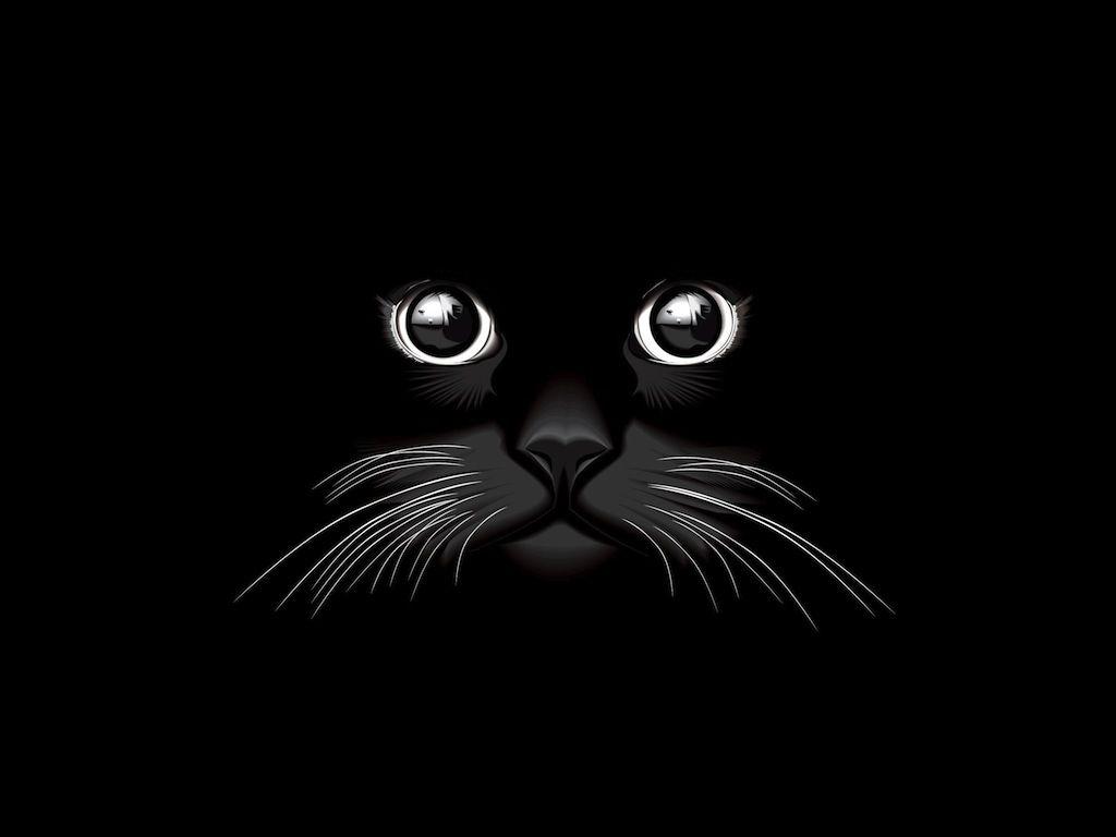 Black Cat Vector Cat Vector Black Cat Pictures Animal Illustration
