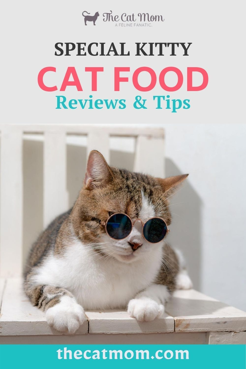 Pin On Nutrition Best Cat Food
