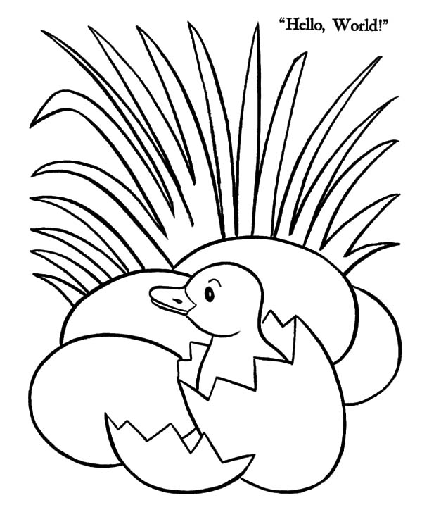 Duck Egg Hatching Beside Grass Coloring Pages Color Luna Coloring Pages Animal Coloring Pages Egg Coloring Page