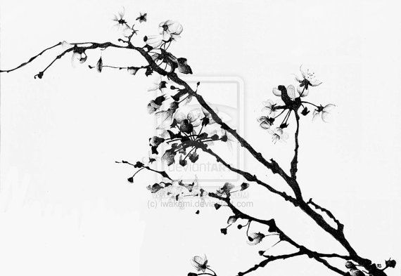 Black And White Cherry Blossom Print By Rstephensart On Etsy 10 00 Cherry Blossom Art White Cherry Blossom Cherry Blossom Drawing