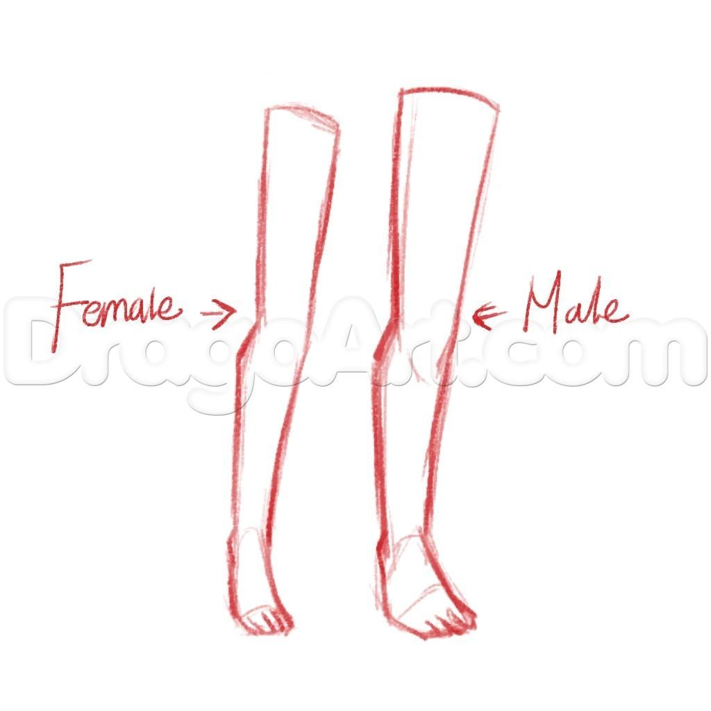 Drawing Anime Legs How To Draw Anime Legs Step Step Anatomy People Free Online Jpg 1024 1024 Human Drawing Online Drawing Cartoon Legs