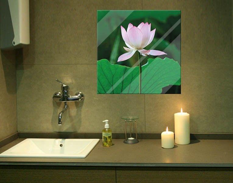 Glasbild Seerose   Glasbilder, Seerose und Flora und fauna